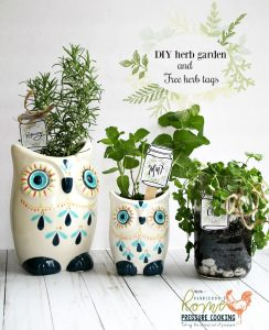 DIY Herb Garden And Free Herb Tags
