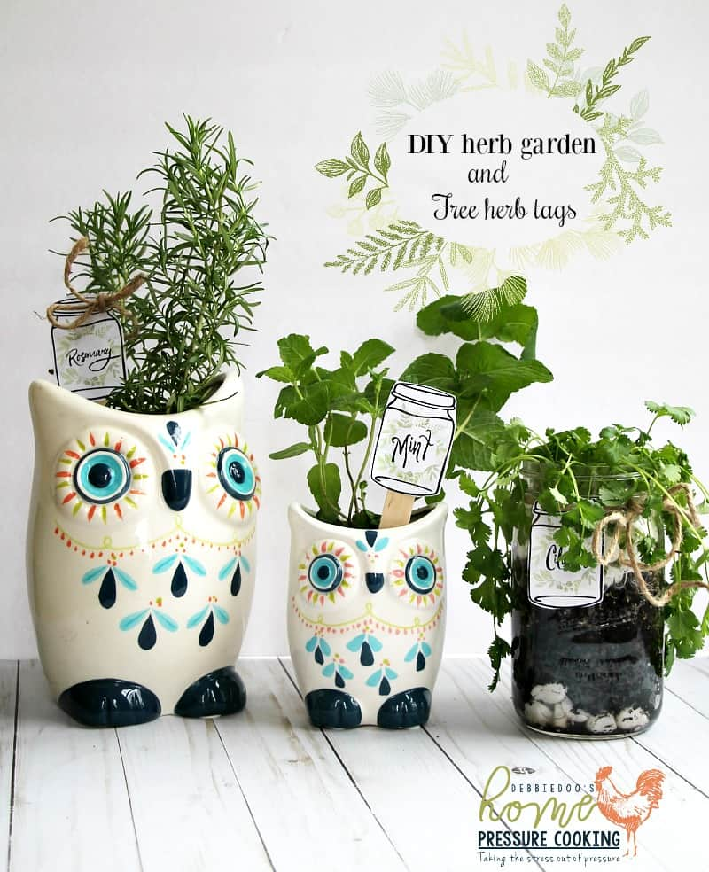 Today I Am Sharing How To Make Your Own Herb Garden In A Mason Jar,  Recycled Jar Or A Cute Garden Pot.
