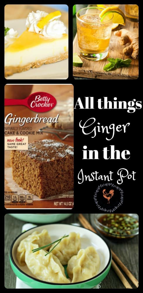 All things Ginger recipes in the Instant Pot