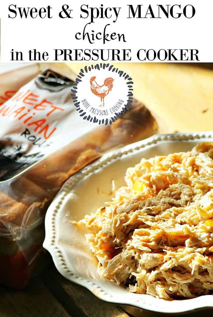 Weight watchers Instant Pot sweet and spicy chicken