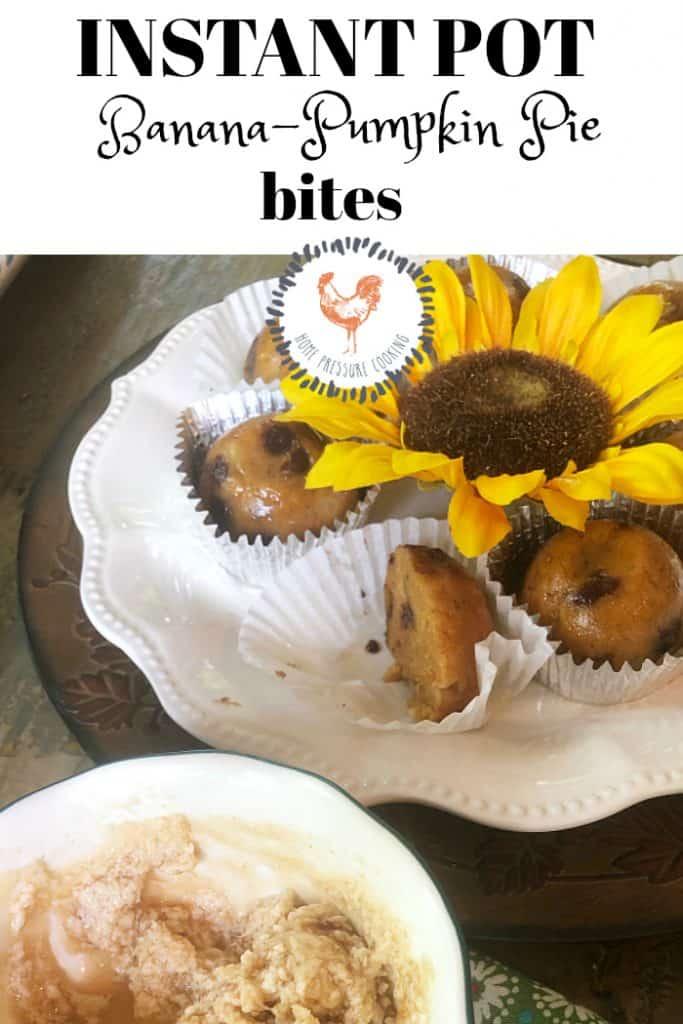 Instant Pot Banana-Pumpkin bites