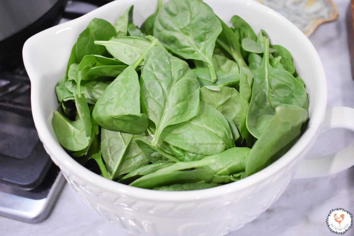 Fresh-Spinach-for-Farfalle-Soup-JENRON-DESIGNS